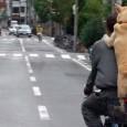 Cani vaganti sull'autostrada? Rappresentano un 'caso fortuito'!