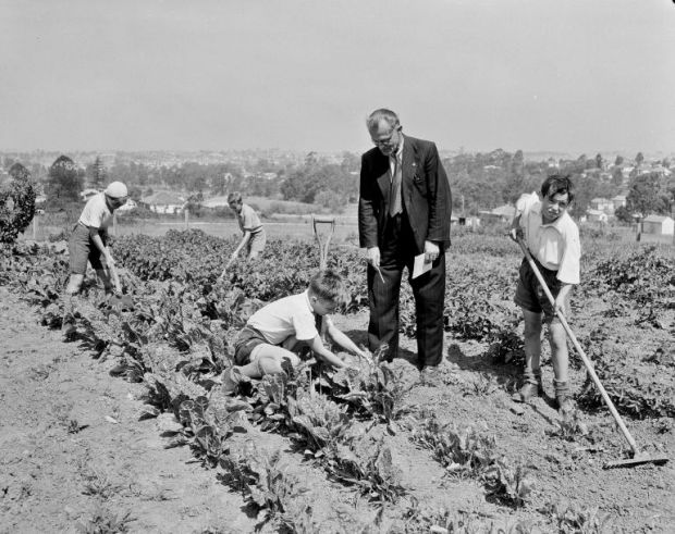 schiavi lavoro